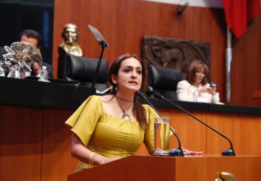 Labor del Instituto Nacional de Desarrollo Social (Indesol) es fundamental para revertir la pobreza: Iris Vianey Mendoza